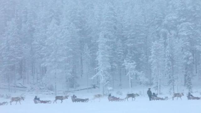 aatsinki arctic cowboys