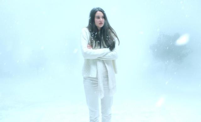 white bird in a blizzard Gregg Araki shailene woodley